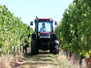 Weinbaureifen im Einsatz